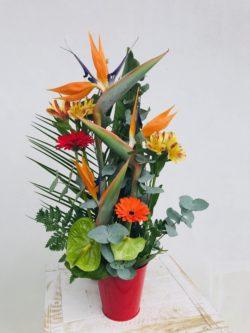 Atelier Floral 64 Composition exotique